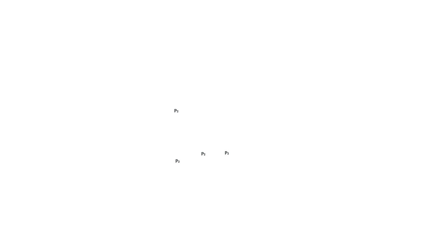 img/2d/p2.png