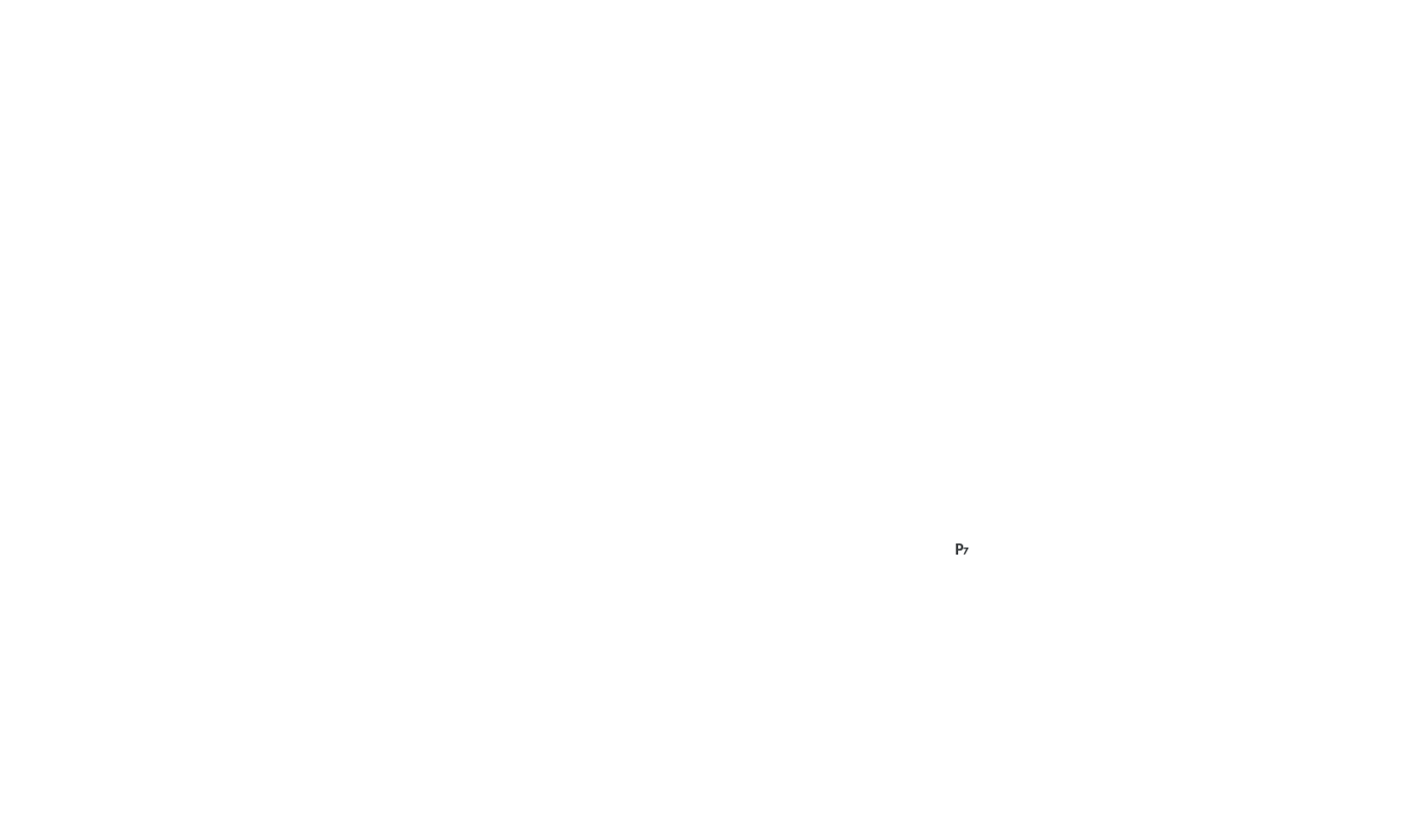 img/2d/p7.png